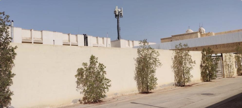 أرض سكنية بحي البديعة